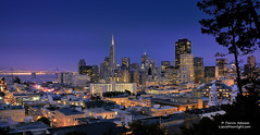 City Lights (dieter.monteyne) Tags: sanfrancisco california park street city travel church skyline night lights bay downtown glow cityscape cathedral district famous broadway landmark tourist coittower taylor baybridge bankofamerica bayarea vista transamerica redlight vallejo darvin atkeson darv inacoolbrith liquidmoonlightcom mikeoria