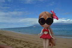 Hawaii Fun