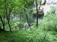 Skocjianske jame (17) (Naturalmentescienza) Tags: grotte jame reka skocjanske timavo sancanziano scanziano