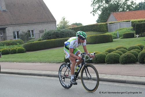 Geel Oosterlo  (256)