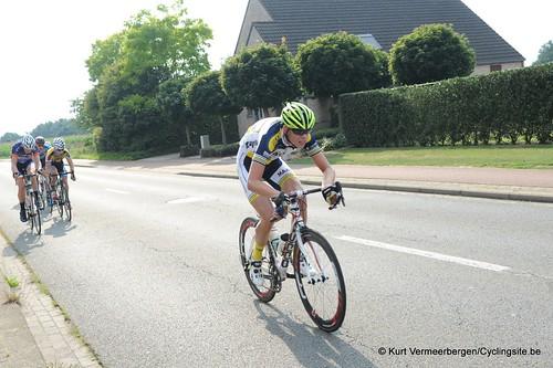 Geel Oosterlo  (283)