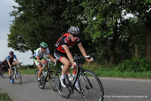 Geel Oosterlo  (216)