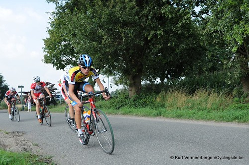 Geel Oosterlo  (138)