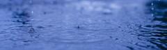 Drip, Drip, Drop **Explored** (flashfix) Tags: blue panorama ontario canada motion texture nature water rain droplets nikon parkinglot rainyday ottawa 40mm puddles mothernature 2014 fakepanorama d7000 nikond7000 2014inphotos july302014