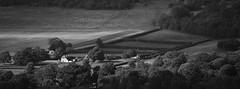 198 kent Godmersham Park (histogram_man) Tags: uk england monochrome landscape kent stourvalley godmersham