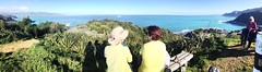 Admiring Wellington South Coast from City to Sea walkway above Island Bay (Photo Trunk) Tags: from above city sea people yellow island bay coast women hiking south walkway wellington seated tops admiring uploaded:by=flickrmobile flickriosapp:filter=nofilter