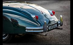 Jaguar XK 140 (Laurent DUCHENE) Tags: journéesdautomne 2016 lesecuyers jaguar xk 140