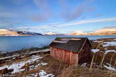 Evenskjer (Norway) (renan4) Tags: lofoten winter fjord sunrise snow sea water mountains beach island norway europe north travel trip nikon d800 1635mm renan4 renan gicquel redhouse