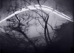 Declinations (Vincenzo Caniparoli) Tags: tincan analog argentique analogico forostenopeico grandeformato homemadepinhole homemadepinholecamera homemade ilford ilfordpaper ilfordrcpaper largeformat landscape monochrome monocromo pinhole paesaggio paper papernegative rcpaper stenopeico sardegna stenopeica sardinia solargraphy solarigrafia selenium seleniumtoner isbenas xtol 5x7 kodakxtol 13x18