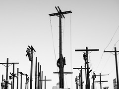 Wiring Calvary (Feldore) Tags: telegraph poles men climbing los angeles street downtown training day workers exercise surreal candid california feldore mchugh em1 olympus 1240mm