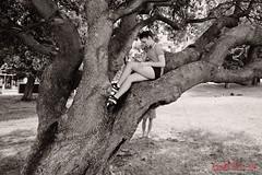Girl reading in a tree - Coogee. (Kent Johnson) Tags: 1600logoadjsecrpf4788 girl tree beach coogee instagram fujifilmxpro1 xf18mmf2r blackwhite nature life