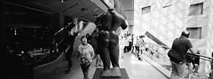 Statue Gazing (@fotodudenz) Tags: hasselblad xpan film rangefinder 30mm super ultra wide angle national gallery victoria 2017 statue kodak bw400cn australia melbourne panorama panoramic