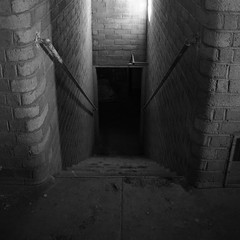 Way Down We Go (nedlugr) Tags: waydownwego kaleo california ca carrizoplainnationalmonument carrizoplain abandoned house brickwall stairs railings shadows down usa basement blackandwhite bw