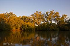 Murray Sunrise (nickmorton50) Tags: albury nsw australia