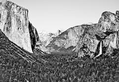 Yosemite Valley (Thomas Hawk) Tags: halfdome otherkeywords yosemite fav10 fav25