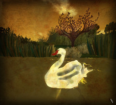 Niamh's Journey - White Swan (Ceakay Ballyhoo) Tags: watercolour watercolor sl second life installation art storytelling celtic forest trees fairytale storybook