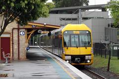 Leafy Lindfield (jamesmp) Tags: railcorp cityrail sydneytrains downerrail downeredi hitachi reliancerail electricmultipleunit doubledeckertrain localtrain suburbantrain electrictrain lindfield newsouthwales australia