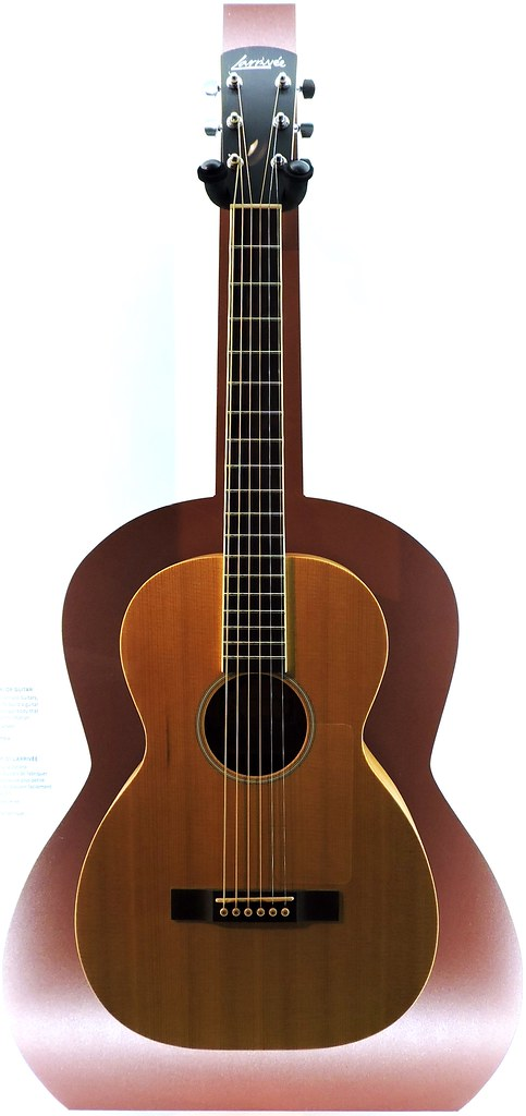 Best Travel Guitar For Airplane