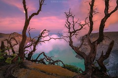 Pink Panther (Mytruestory Photography) Tags: nikonflickraward indonesia kawah ijen kawahijen volcano sulfur landscape highangleview asia eastjava mytruestoryphotography sunrise