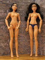 New Wonder Woman Dolls (onemom526) Tags: wonderwoman dccomics wonderwomanantiope shera