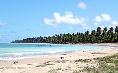 Praia do Patacho - Porto de Pedras - Alagoas - Brasil (Antonio Marin Jr) Tags: antoniomarinjr praiadopatachoportodepedrasalagoasbrasil praiadopatachoportodepedras praias beach alagoasbrasil landscape portodepedrasalagoasbrasil