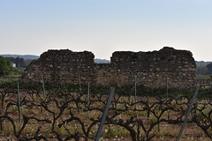 Vil-la romana de Santa Tecla - La Gravosa, Santa Margarida i els Monjos (esta_ahi) Tags: villaromana santatecla lagravosa santamargaridaielsmonjos penedès barcelona spain españa испания