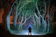 'The Long Dark Road' - Dark Hedges, Northern Ireland (Gavin Hardcastle - Fototripper) Tags: ireland dark hedges tree tunnel nightscape trees beach beech creepy gavinhardcastle fototripper northern