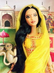 Dolls of the World India Barbie (The Dollhouse of Usher) Tags: monkey sari saree yellow label pink theworld dolls doll barbie india