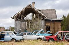 53/17  - V o l v o  I - (mariburg) Tags: lostplaces abandoned rotten marode forgotten ruin decay desolate derelict cars rustycars auto canoneos5dmarkiv canonef70200mmf28lisiiusm volvo