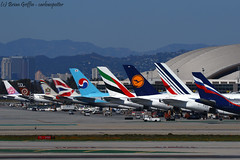Tom Bradley's Tails at LAX | KLAX | 20170228 (carlowspotter) Tags: aviation airplane aircraft aerosexual avgeek boeing airbus lax klax losangeles tombradley airport california usa a380 a388 a380800 b777 b777300 b777300er b773 b773er b77w b772 b777200 b777200lr b77l b747 b744 b747400 a333 a332 a330200 a330300 jumbo jumbojet jet turbofan aeroflot airfrance lufthansa emirates korean britishairways etihad fiji chinaairlines tails pier