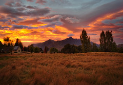 The Golden Fields In The Morning (Stuck in Customs) Tags: newzealand queenstown stuckincustomscom treyratcliff treyratcliffcom ratcliff trey southisland dailyphoto horizontal colour color day inverted mountain hdr hdrphoto rr grass water sky snow blue white green black rock 2017 p2017 reflection pond remarkables field outside outdoor outdoors hill landscape mountainside view range southernalps x1d hasselblad june piste sport sunset
