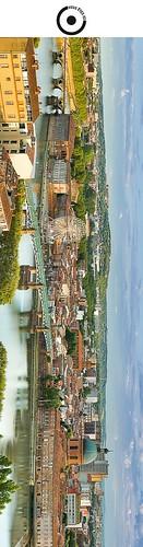 19x5cm // Réf : 12040714 // Toulouse