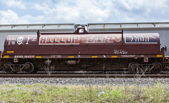 (o texano) Tags: houston texas graffiti trains freights bench bencing hiccup