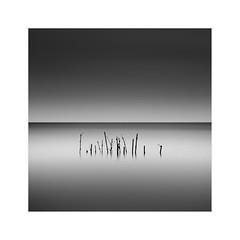 Dark Life (^soulfly) Tags: longexposure batupahat malaysia johor canon5dmark2 ef1740mm nature blackwhite monochrome hoya ndx400