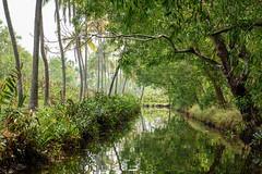 Channel In Kerala Backwaters (luke.me.up) Tags: kerala backwaters tourism india cochi cochin nikon d810 water river channel