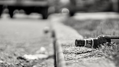 """""""Blue Moon in the Morning"""" (36D VIEW) Tags: mirrorless helios 44m4 sony canon 58mm russian lens beyondbokeh bokeh bottle curb beer blackwhite monochrome grayscale black white"""