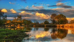 silent river (bocero1977) Tags: grass landscape sunset nature water germany outdoor light trees blue scenery river shore meadow dawn colors green sundown reflection sky clouds