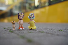found some lovley glasses (omgdolls) Tags: sonny angels wiener wednesday owl tiger
