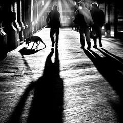 An der Marktkirche (ZaglFoto.de) Tags: deutschland halle saale sachsenanhalt street bnwhallesaale schwarzweiss strase streetphotographer streetphotography