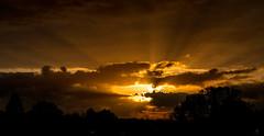 schönheit..... (st.weber71) Tags: sonne sonnenuntergang himmel hünxe wolken nikon nrw niederrhein natur outdoor sonnenstrahlen sonnenschein sonnenlicht bäume sunbeams