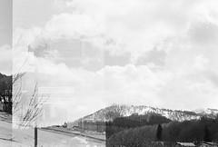 Olympus trip 35 (arthurkha) Tags: film blackandwhite kentmere 400 camera olympus trip 35