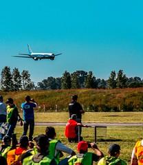 volando en otoño 2014 001