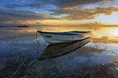Another Sunrise with The Boat (Pandu Adnyana) Tags: morning bali cloud seaweed beach sunrise indonesia landscape photography boat moss tour calm guide pantai calmness sanur karang baliphotography balitravelphotography baliph