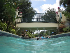 Vacation Shots- Canon D30 (T. Jacques) Tags: orlando canond30 orangelakeresort
