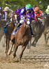 """California Chrome • <a style=""""font-size:0.8em;"""" href=""""http://www.flickr.com/photos/47141623@N05/14022795049/"""" target=""""_blank"""">View on Flickr</a>"""