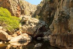 Torrent de Pareis (Greg_Men) Tags: mountains canon landscape spain gorge mallorca