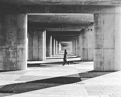Repetition (C_MC_FL) Tags: vienna wien street light shadow blackandwhite bw woman white black monochrome contrast canon walking person photography eos austria licht blackwhite sterreich fotografie walk tunnel row symmetry repetition sw frau tamron kontrast schatten schwarz gehen aspern symmetrie weis reihe strase 18270 60d b008 hintereinander seestadt