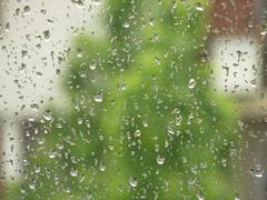 Gouttes (asmoth360) Tags: window rain drops eau pluie rainy fentre vitre gouttes pluvieux