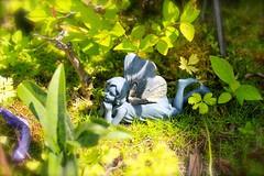 Fairyland (EssHaych) Tags: england garden pixie fairy essex basildon
