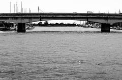 Gita Scolastica 2014_097_48 mm_ (Giulio Gigante) Tags: street people rome roma boat bambini persone tevere gita ostia battello giulia scuola maestra ostium giulionikon
